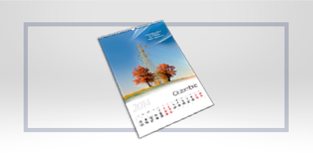 Calendare perete 12 file,format 480/320 mm